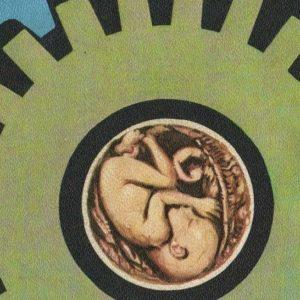Entre la ectogénesis y la felicidad de la madre. Sobre la reproducción del género humano en el patriarcado productor de crisis. Por Thomas Meyer