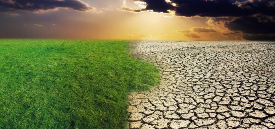 El calentamiento ha reducido la productividad agrícola en un 21% … pero solo dentro de la torre de marfil. Y en el mundo real aumentó al menos un 10% [ru]